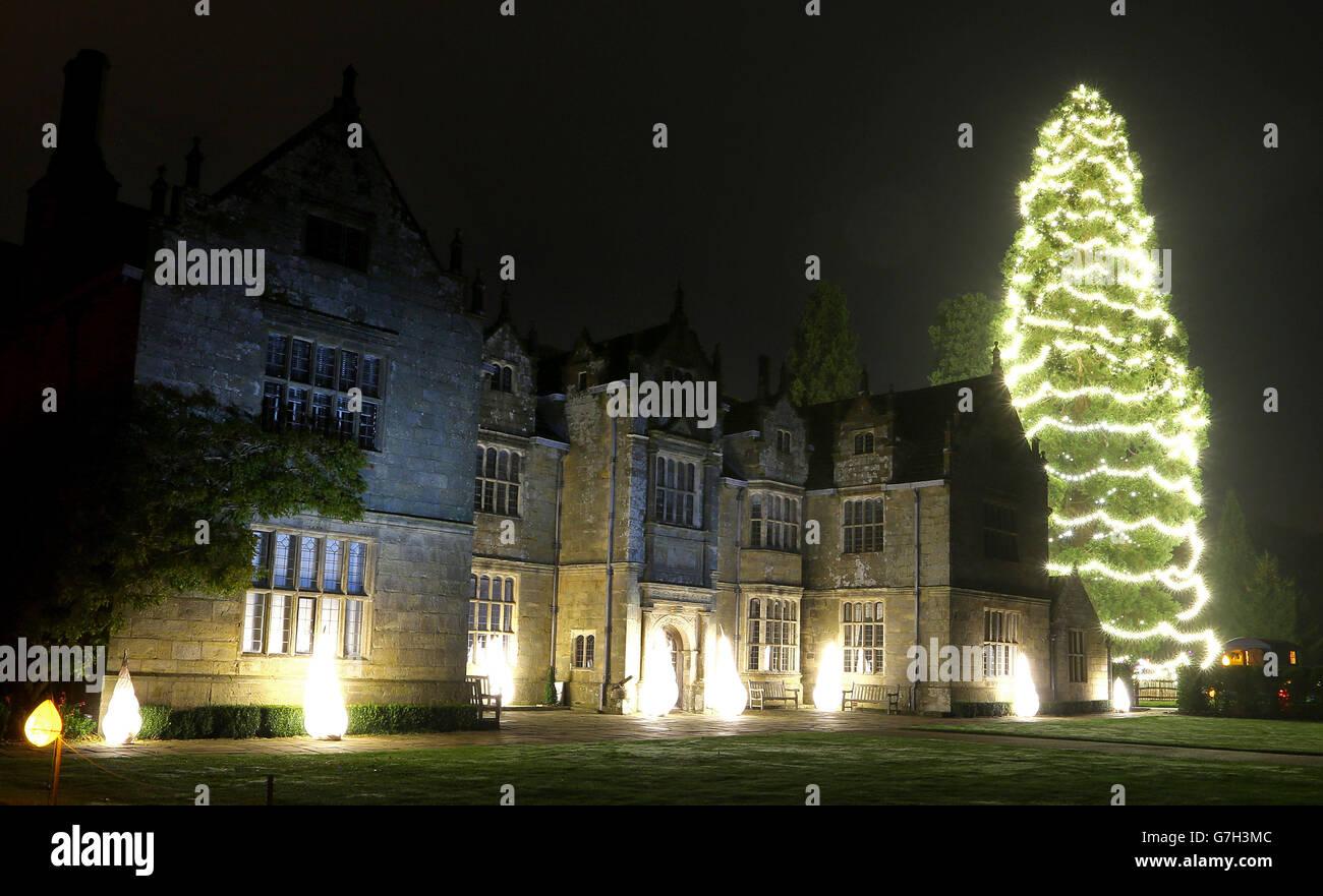 Wakehurst Place Christmas tree Stock Photo: 107940908 - Alamy