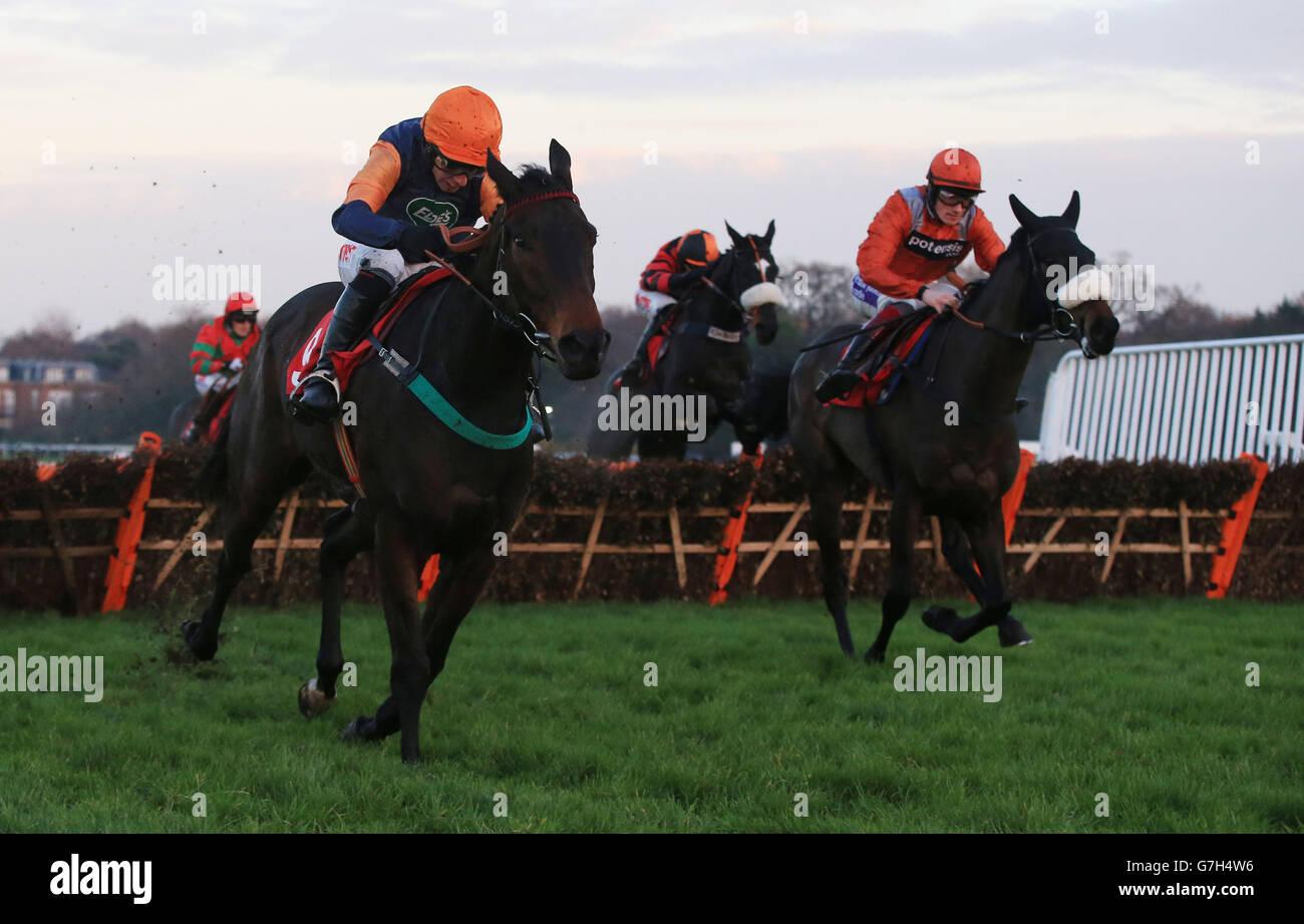 Horse Racing - Tingle Creek Christmas Festival - Sandown Park Racecourse - Stock Image