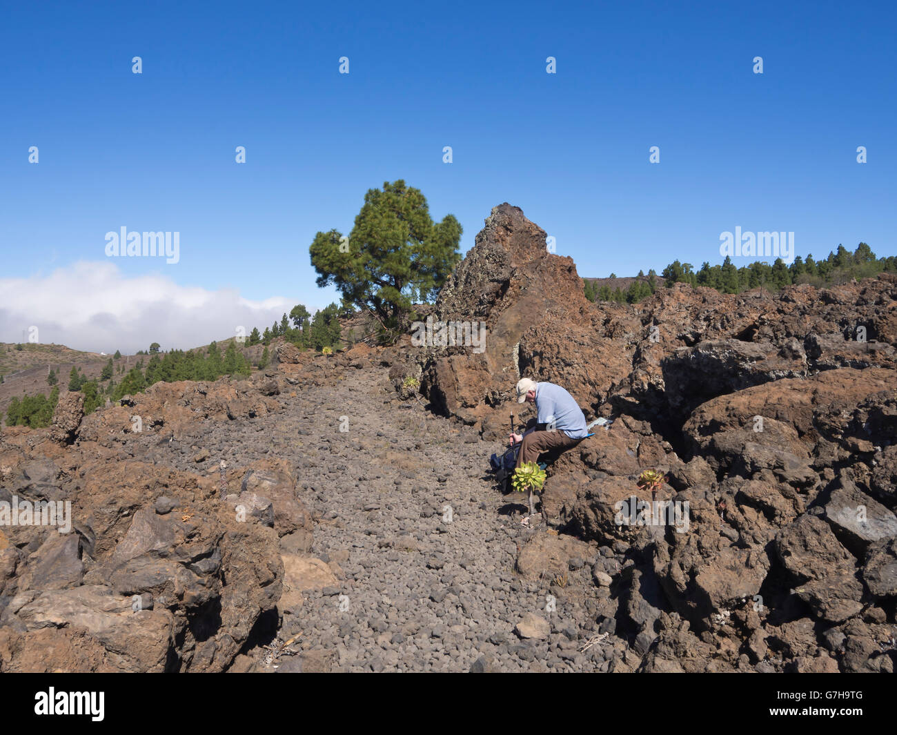 Canary Islands,footpath in an area of solidified black lava rocks,  tired hiker pausing  near Arguayo Tenerife Spain - Stock Image