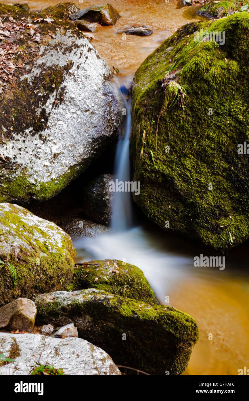 Creek with running water, small waterfall, Stillensteinklamm, Grein, Upper Austria, Austria, Europe - Stock Image
