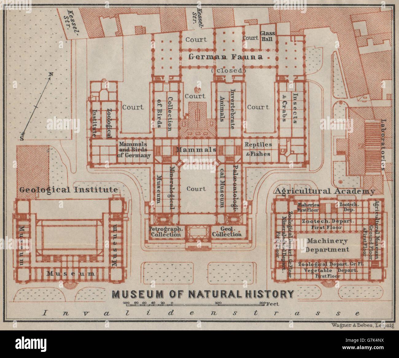 Natural History Museum Für Naturkunde Berlin Floor Plan Karte 1923 Old Map Stock Photo Alamy