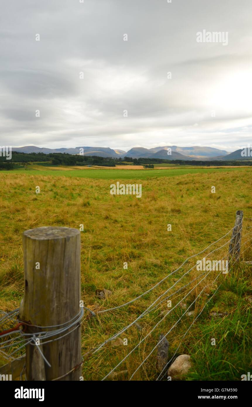 View from the B970 Boat of Garten road of the Cairngorm plateau, by Aviemore, Scotland UK - Stock Image