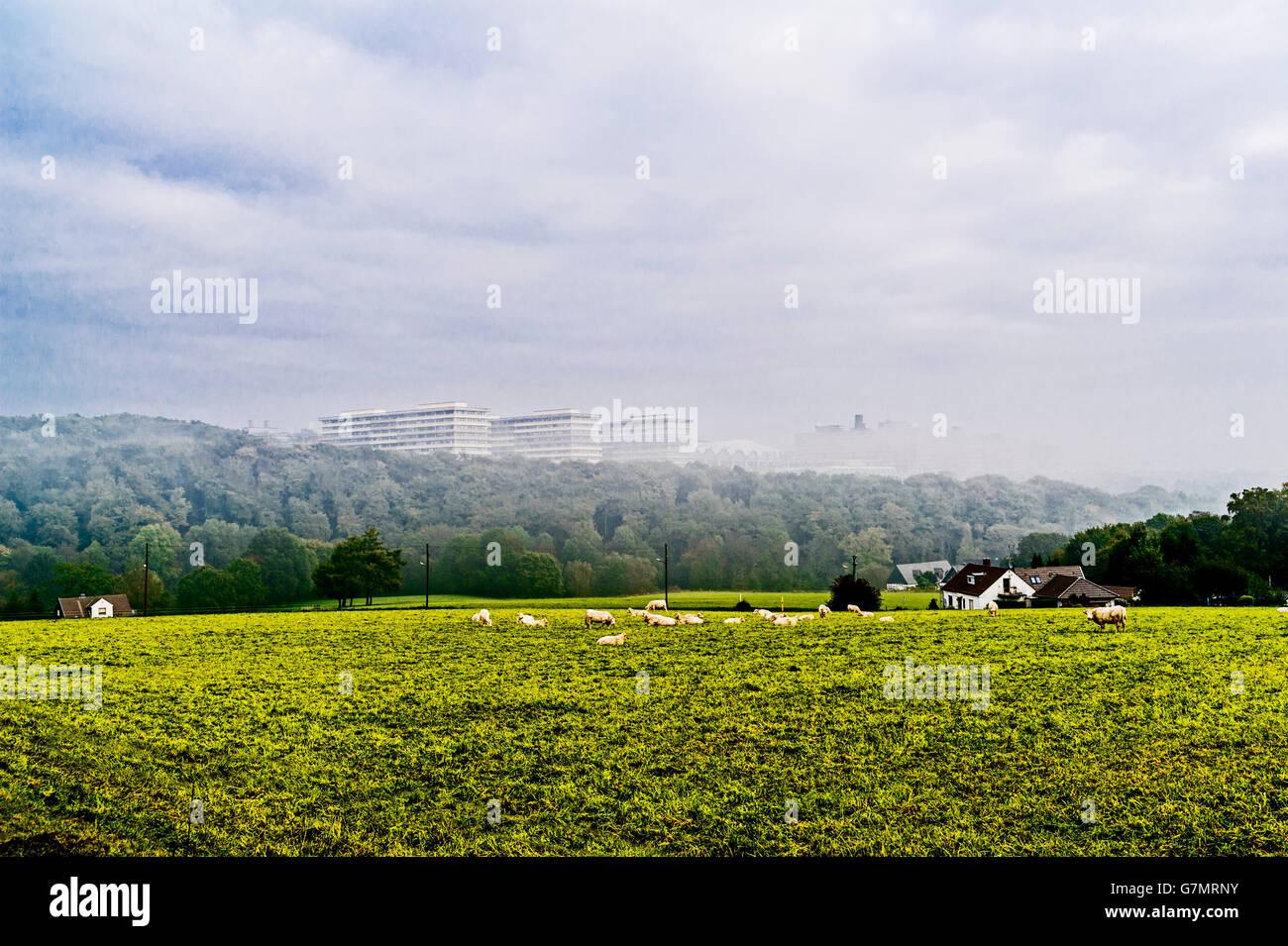 Foggy view at the University in Bochum, ruhr area, Germany; Blick auf die Ruhr Universitaet Bochum, vom Süden - Stock Image