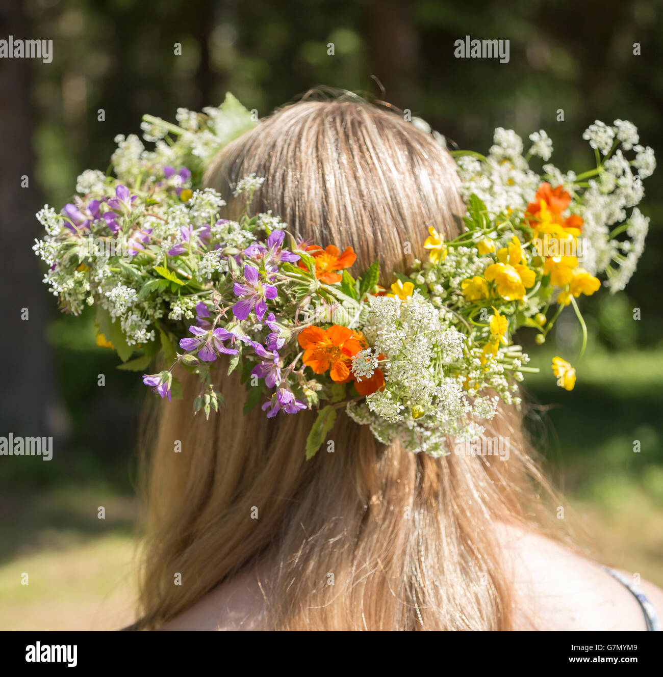 Swedish Midsummer Headgear Traditional on a female head of hair. - Stock Image