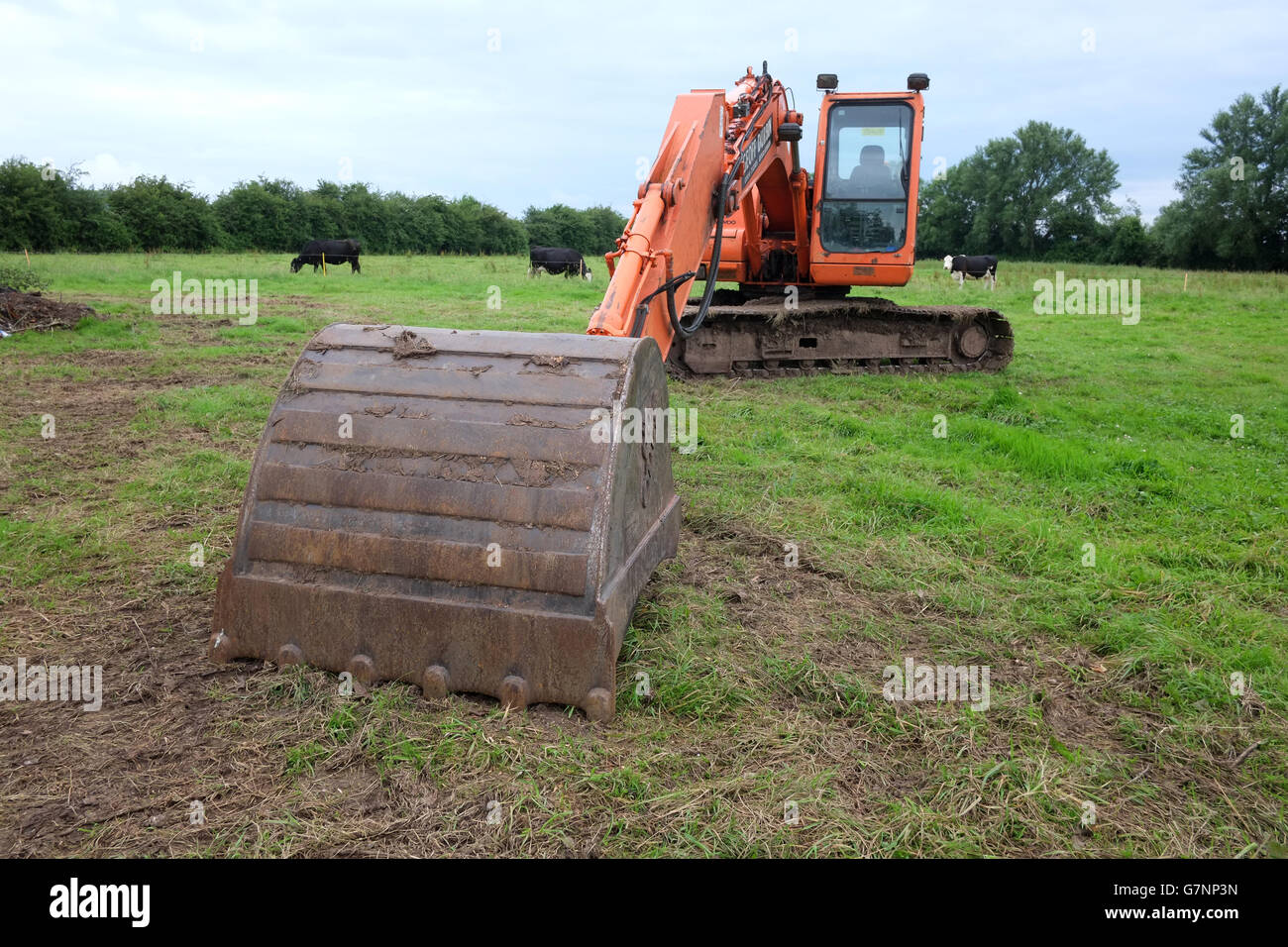 Orange 360 machine or digger being used for agricultural ditch or rhyne clearance in Somerset near Cheddar. June Stock Photo