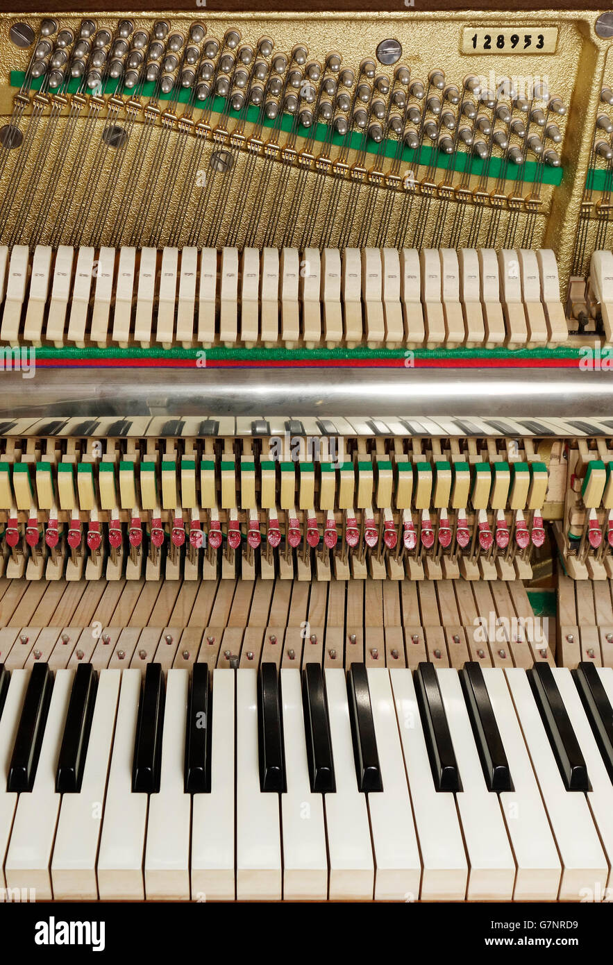 Close up. Upright piano keyboard and action mechanism with strings. - Stock Image