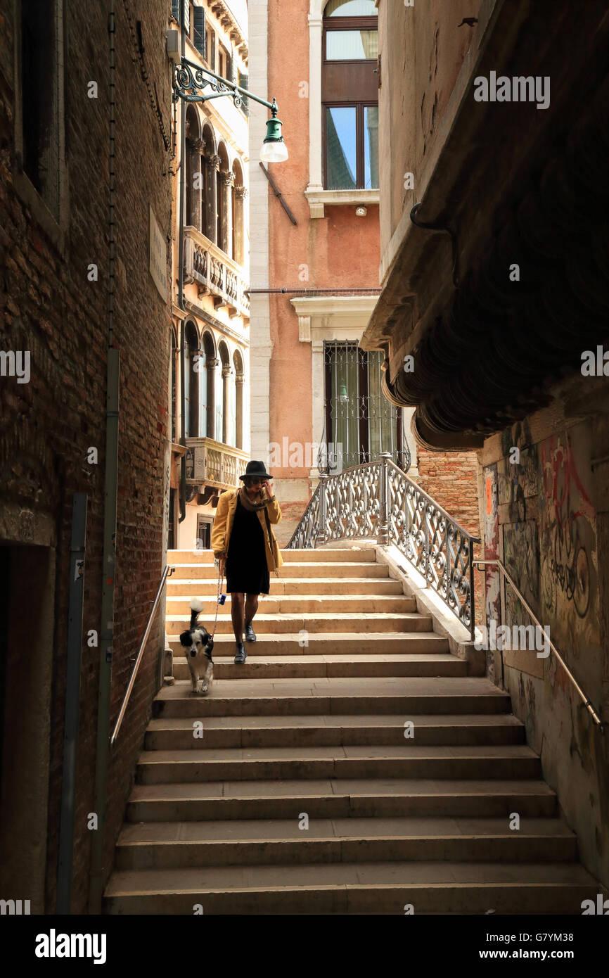 Venice shadows book cover 2015 Italy - Stock Image