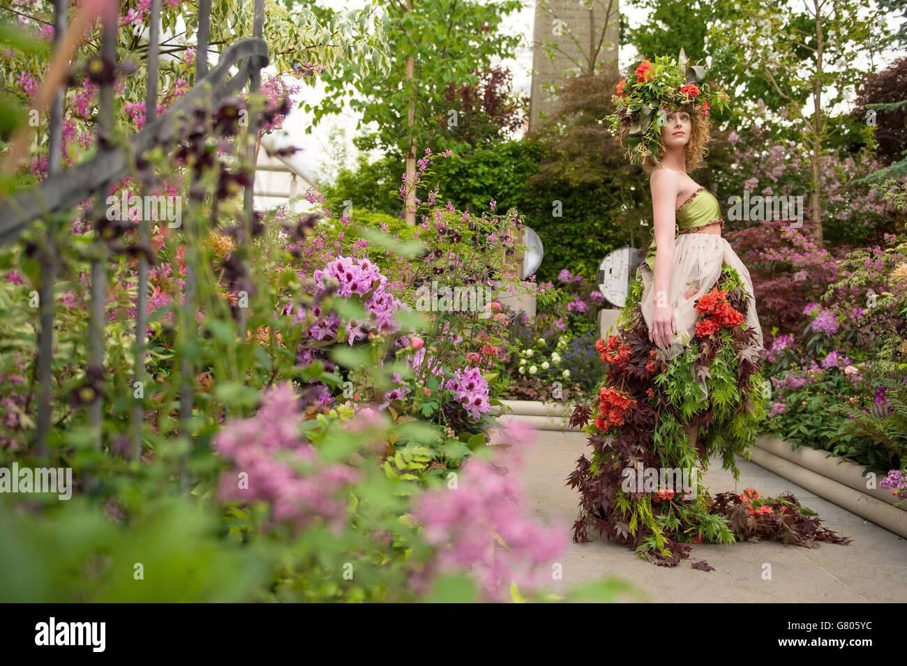 2015 RHS Chelsea Flower show Stock Photo