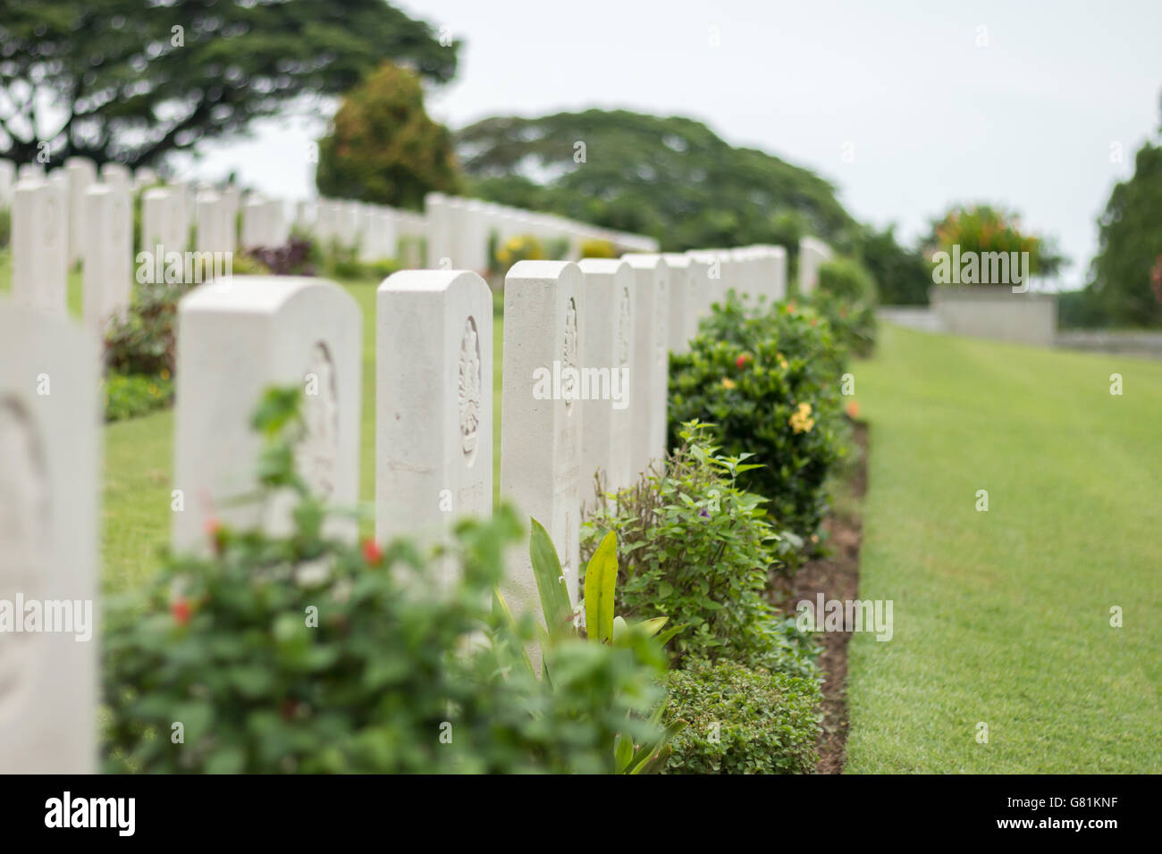 Rows of headstones in the Commonwealth war grave at Kranji, Singapore. - Stock Image