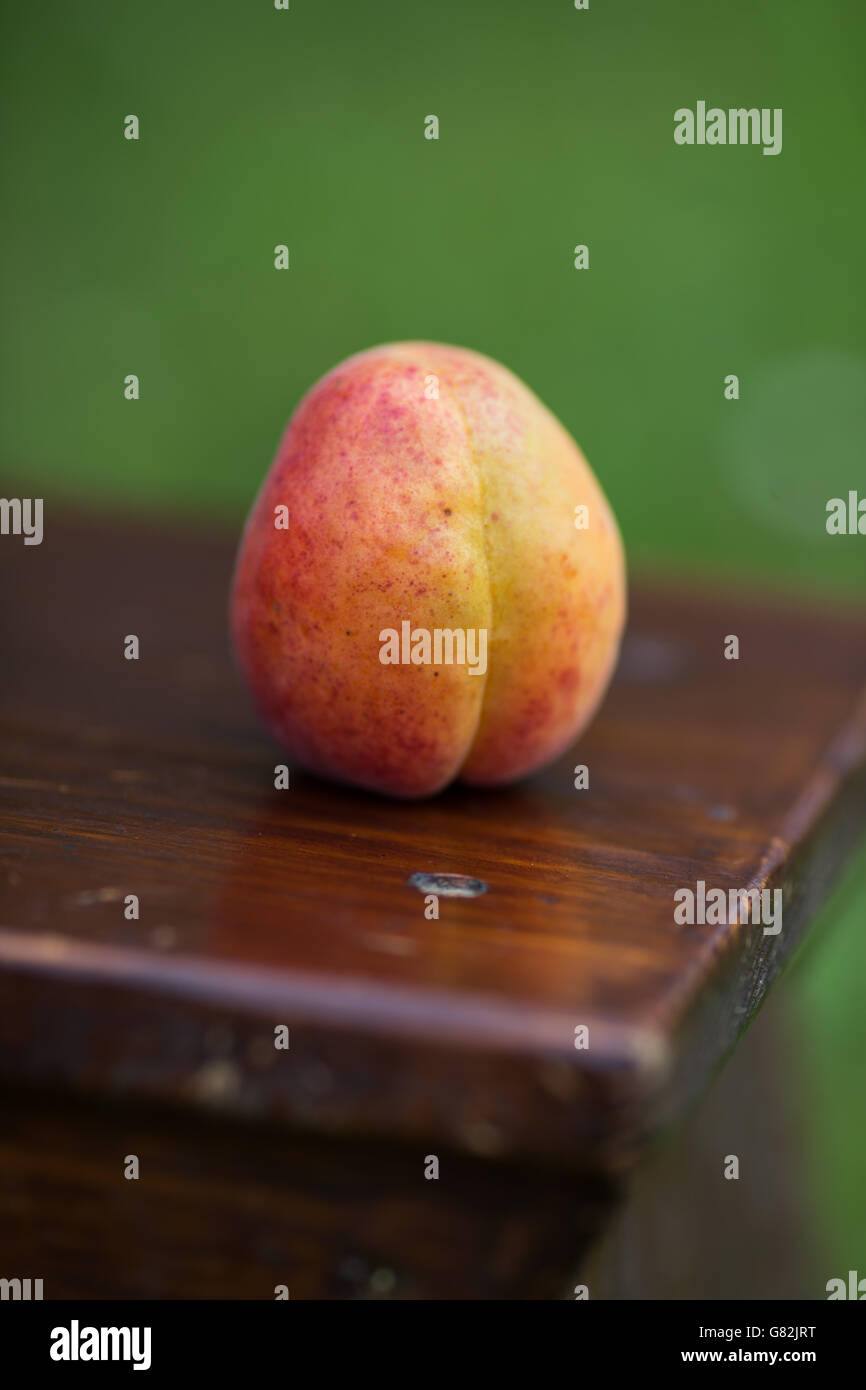 One apricot on table - Stock Image