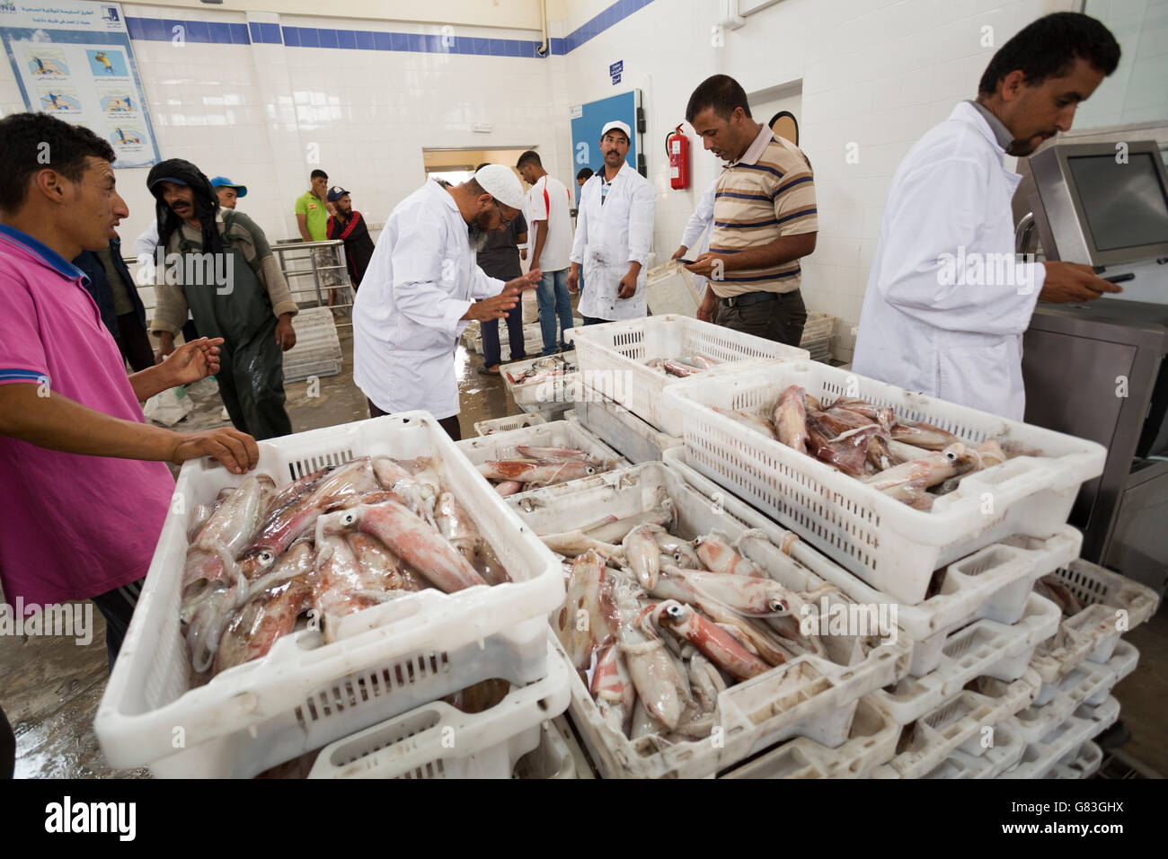 Workers buy and sell fresh seafood and fish at auction in Tifnit, near Agadir, in Morocco. - Stock Image