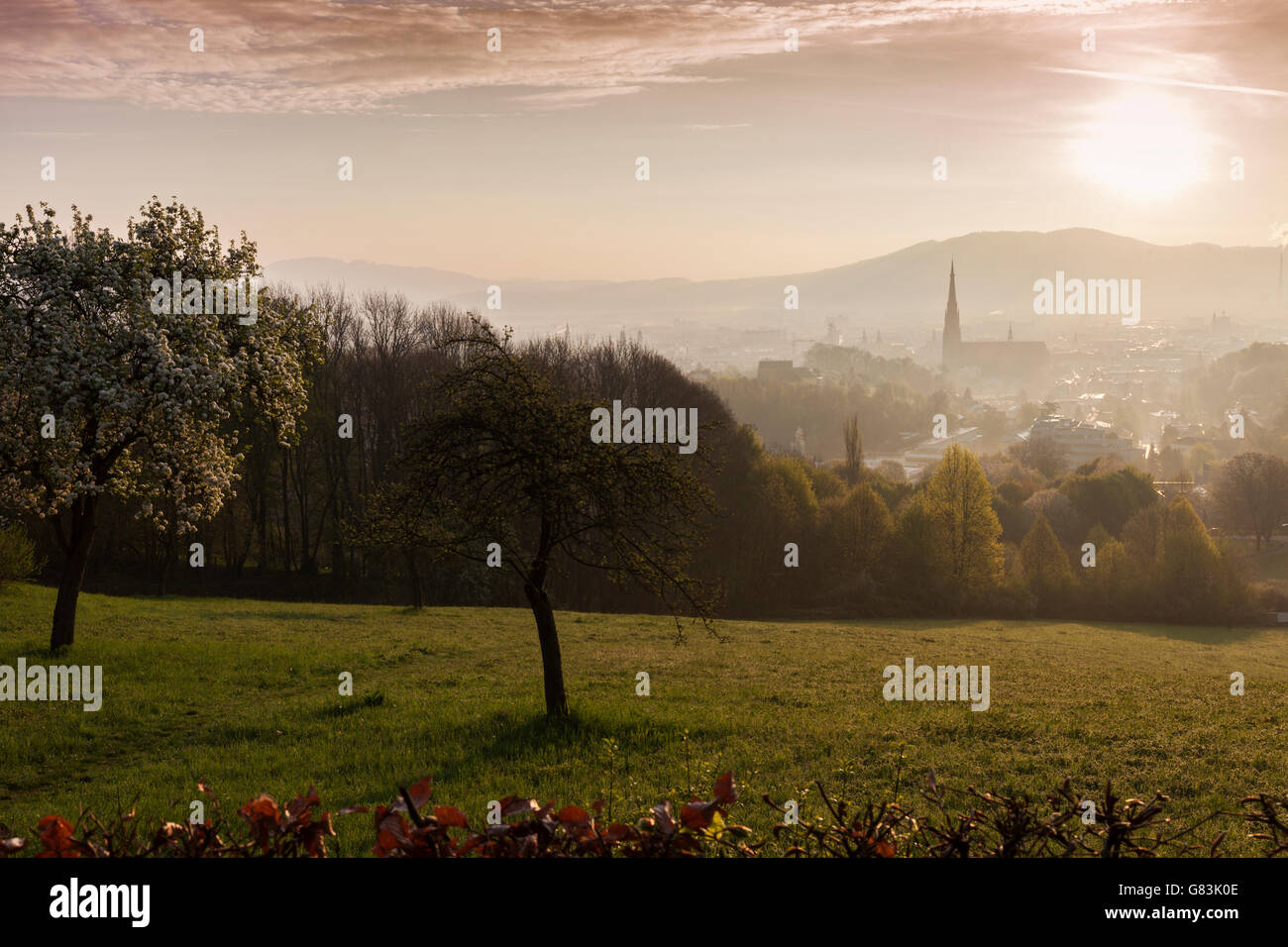 New Cathedral in Linz Stock Photo
