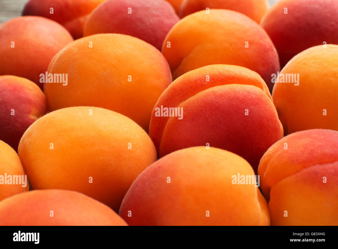 Fresh apricot fruits background close up - Stock Image
