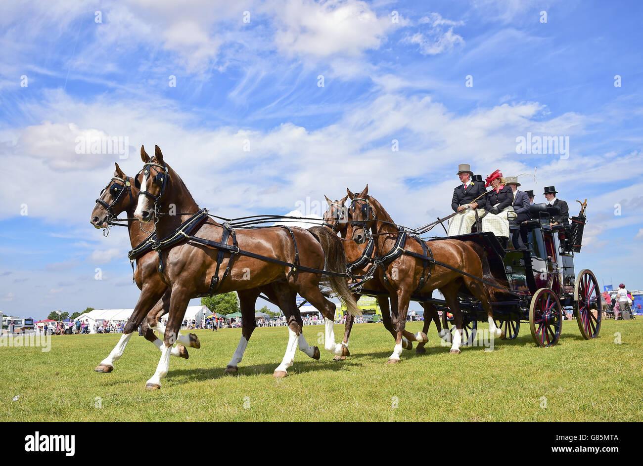 Coaching Marathon class at the Essex Heavy Horse show at the Orsett Showground, Essex. PRESS ASSOCIATION Photo. Stock Photo