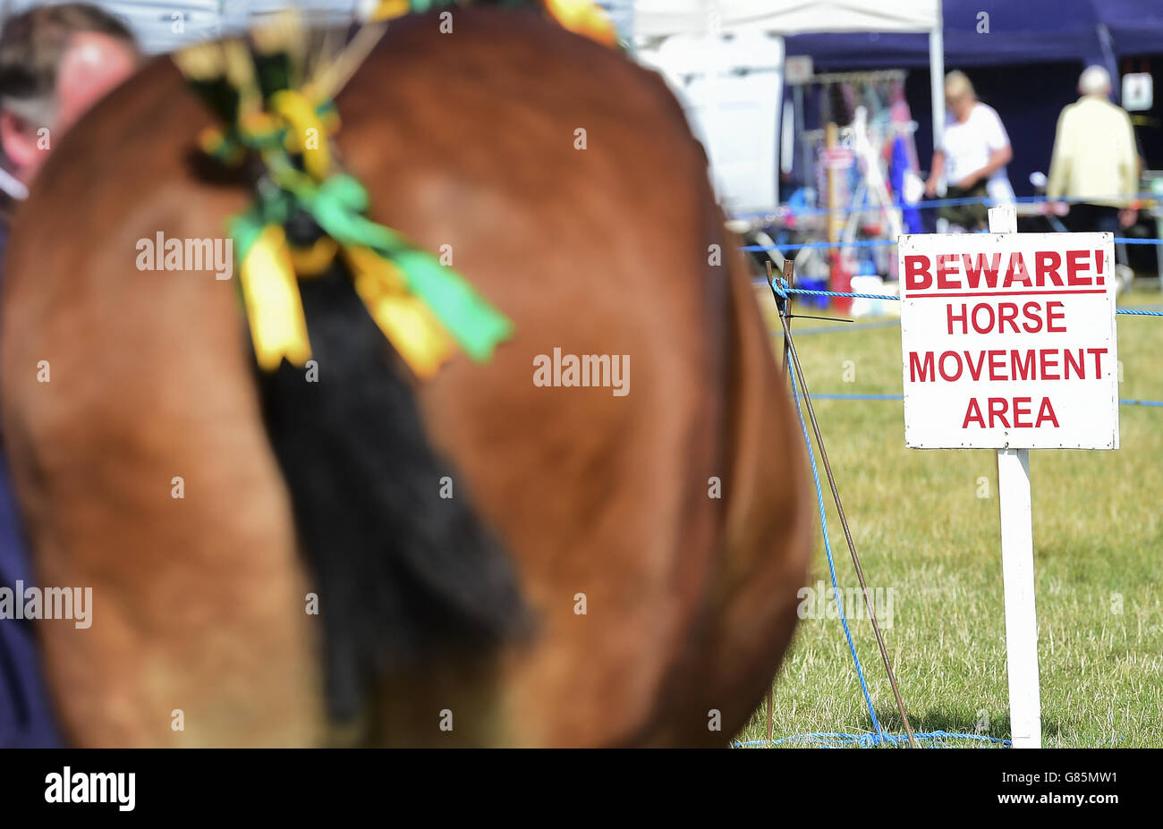 Old Croft Empress at the Essex Heavy Horse show at the Orsett Showground, Essex. PRESS ASSOCIATION Photo. Picture Stock Photo