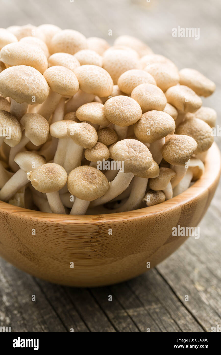 Brown shimeji mushrooms. Healthy superfood in wooden bowl. - Stock Image
