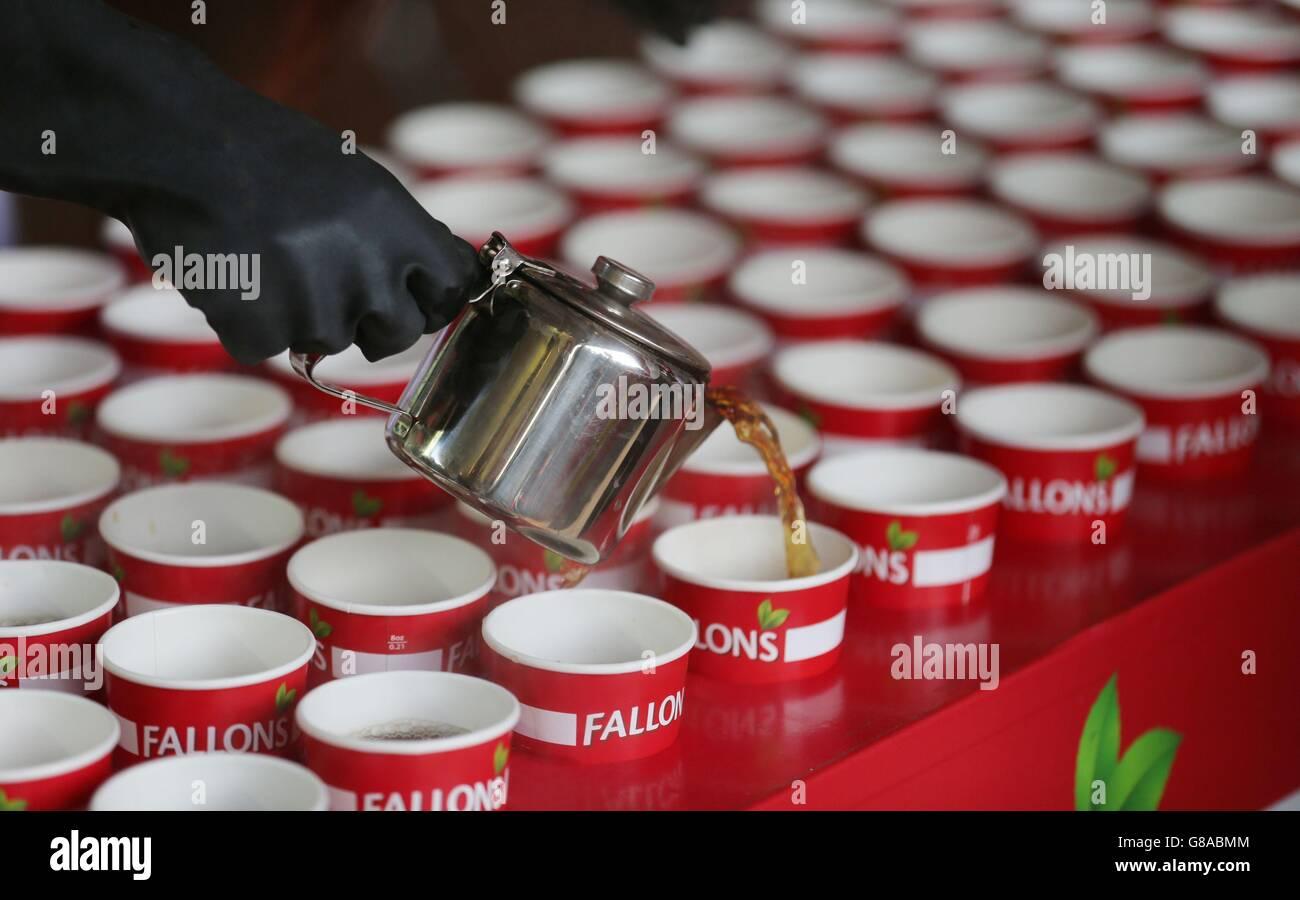 Tea making record - Stock Image