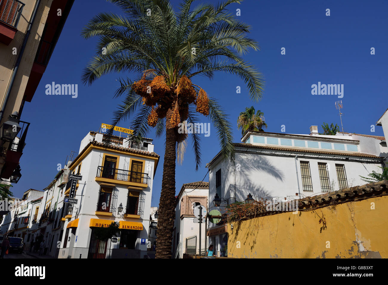 Calle Cardenal Gonzales, Cordoba, Andalusia, Spain - Stock Image