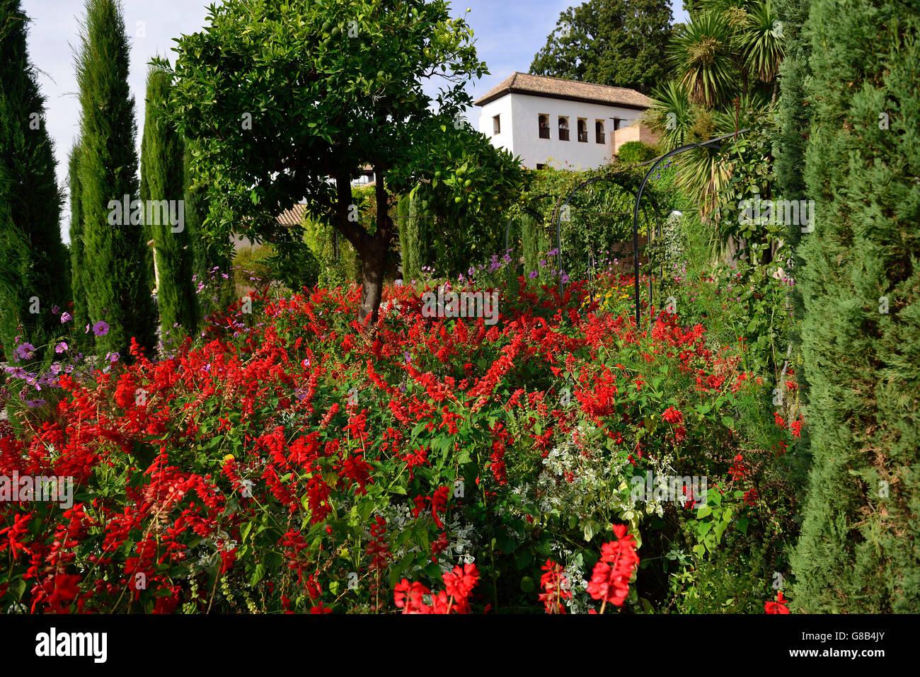 lower gardens, Generalife, Alhambra, Granada, Andalusia, Spain Stock ...