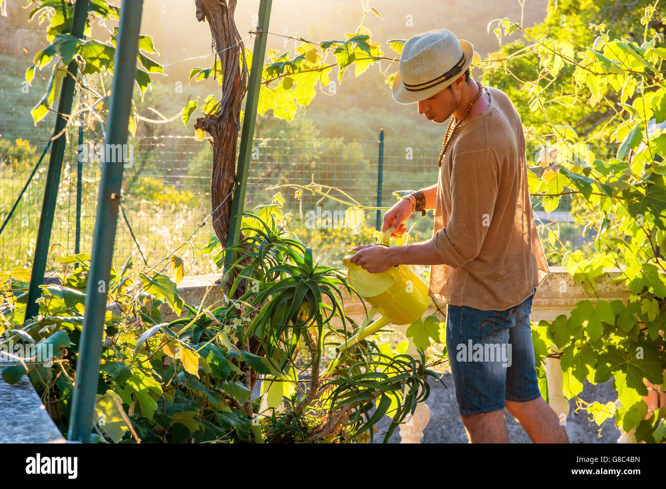 Side view of young stylish man watering plants in garden in sunlight Stock Photo