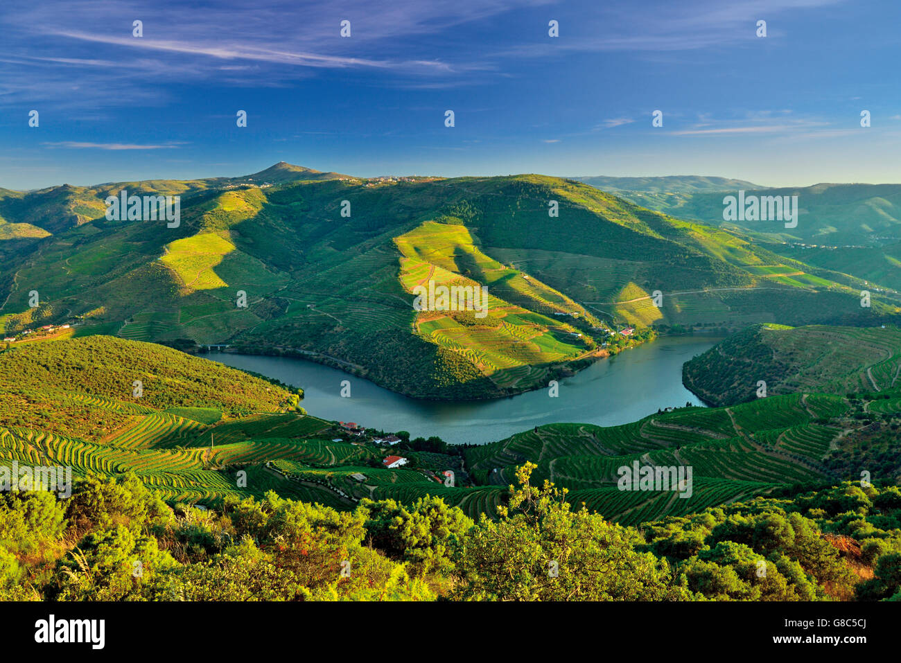 Portugal: Spectacular view of river Douro in the afternoon light - Stock Image