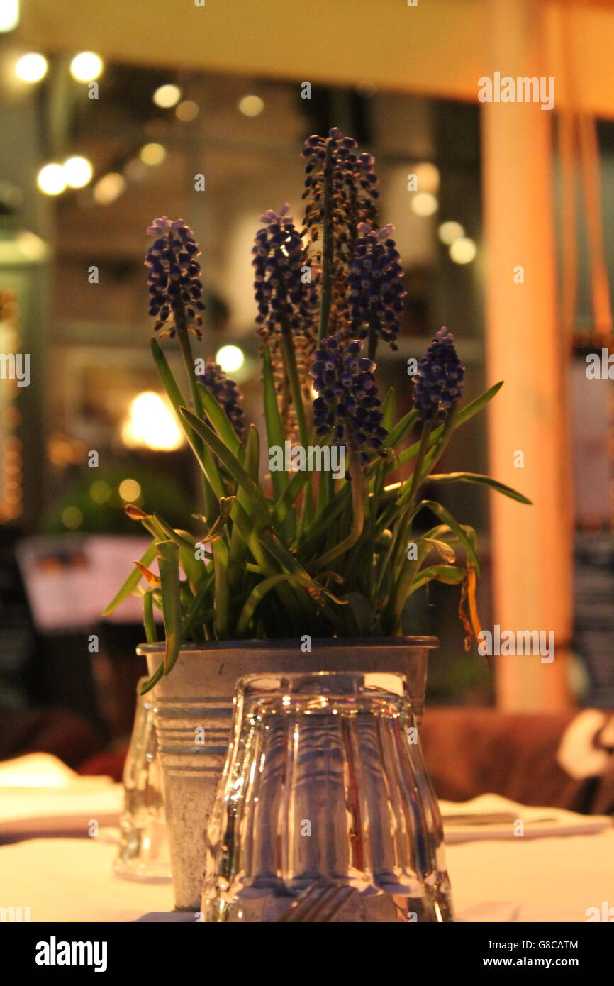 Purple spring flowers copenhagen table decoration scandinavia purple spring flowers copenhagen table decoration scandinavia rustic setting outdoor eating mightylinksfo