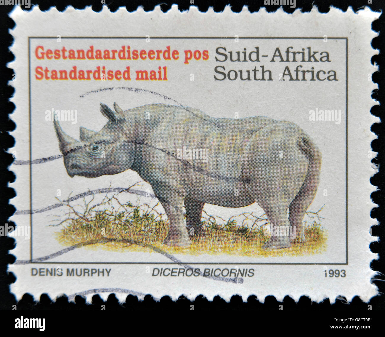 SOUTH AFRICA - CIRCA 1993: A stamp printed in South Africa shows a black rhinoceros, Diceros bicornis, circa 1993 - Stock Image