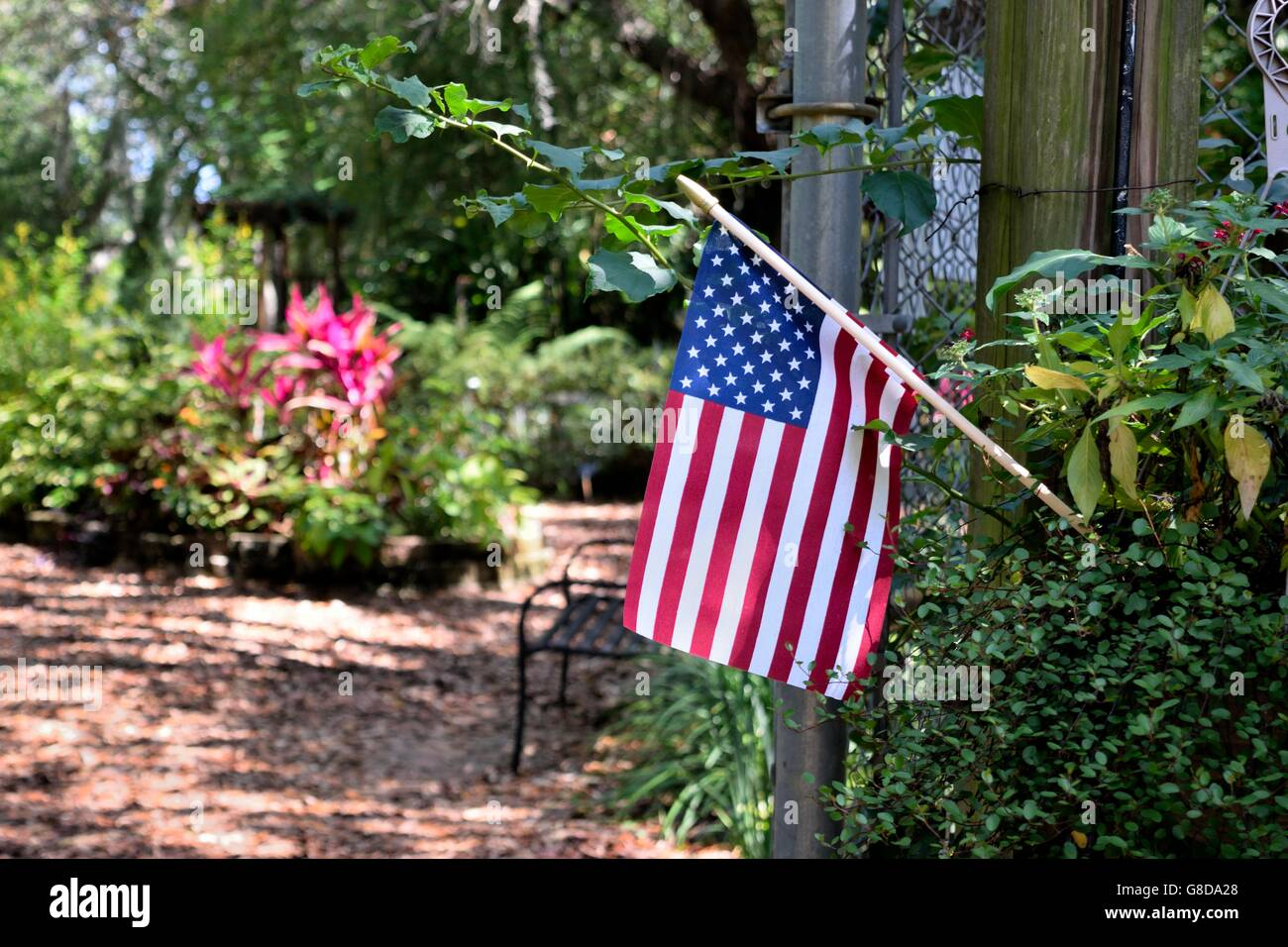 tiny by this soleil flag lorda to beautiful quickweightlosscenter years next of robin in us audience choice garden wins award american a