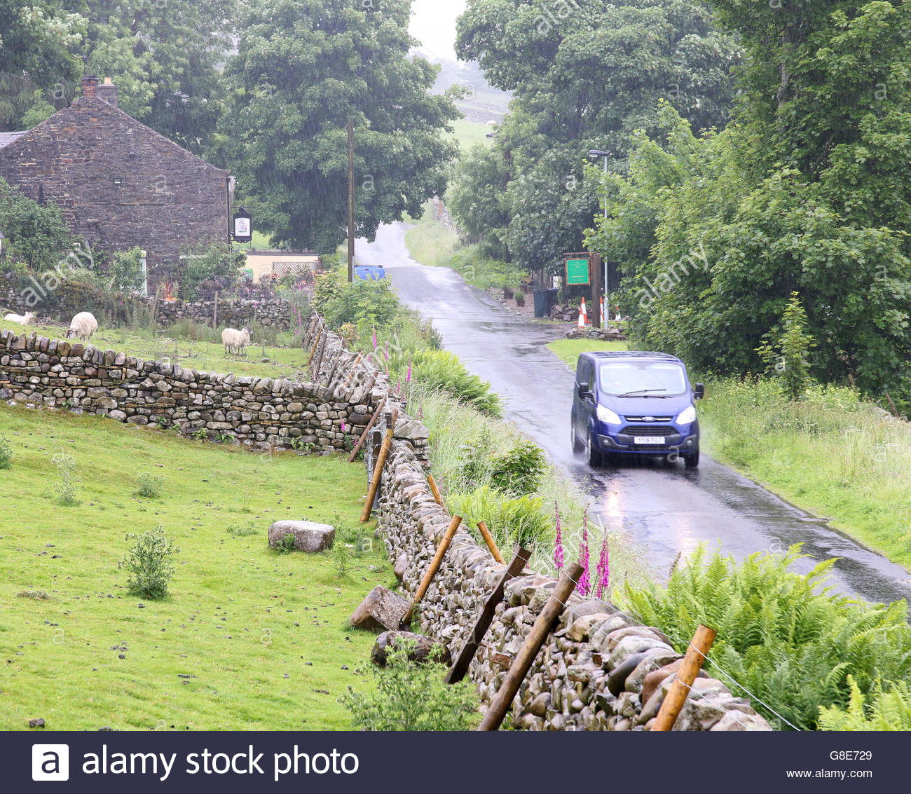 Holwick, Middleton-in-Teesdale, Co Durham, UK 29th June 2016 A motorist drives through the heavy rain as the van's Stock Photo