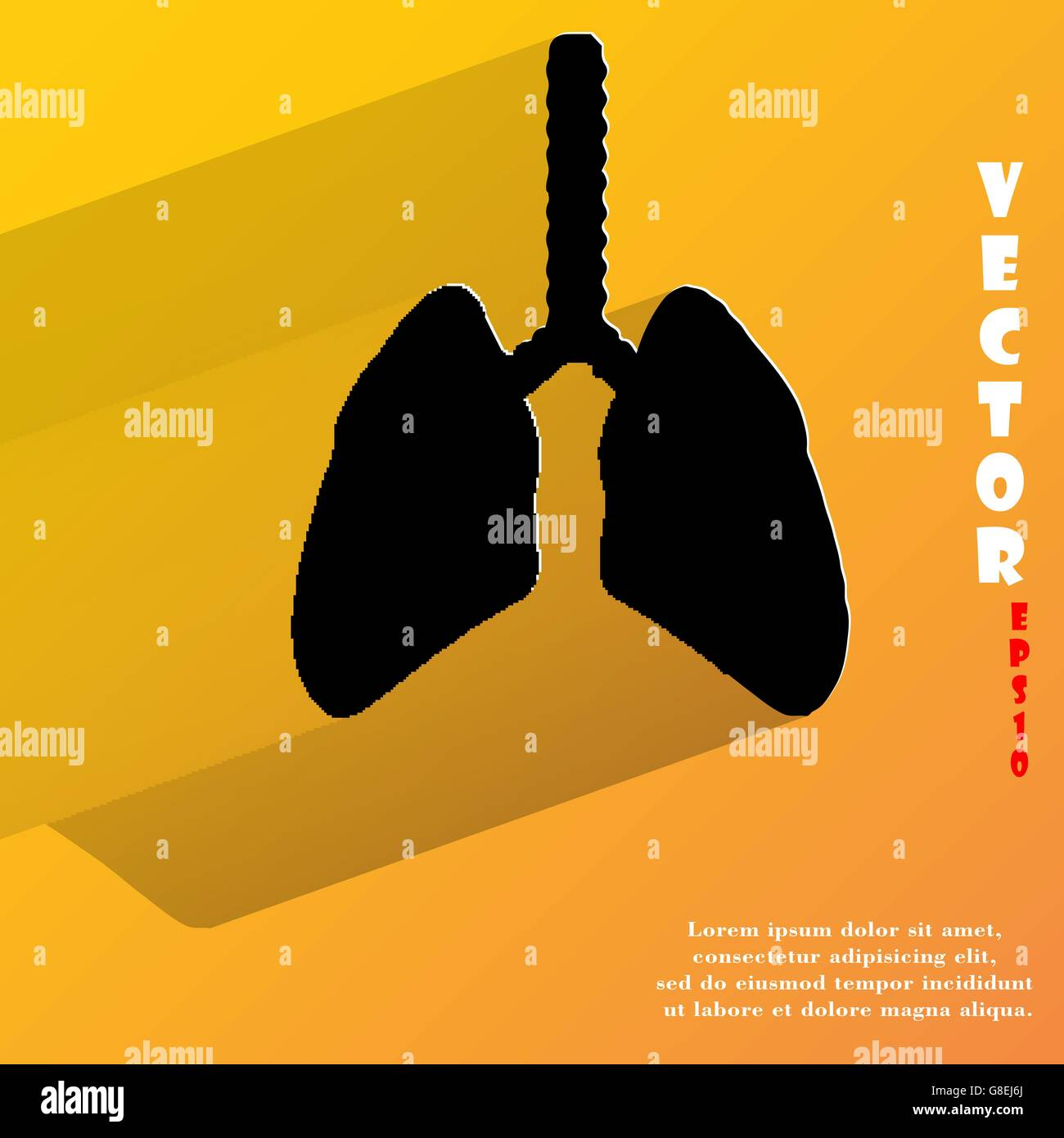 Human lung. Flat modern web button with long shadow and space for your text. Vector. EPS10 - Stock Image