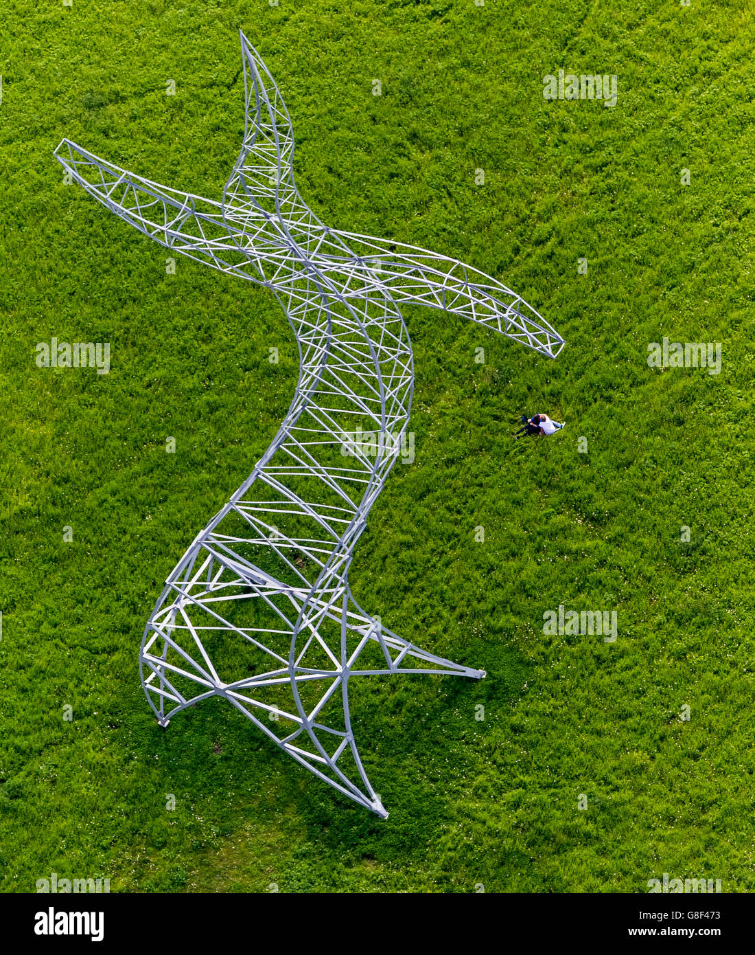 Aerial view, Berlin artist group Inge for EMSCHERKUNST.2013, power mast in the Ripshorster Emscher meadows, - Stock Image