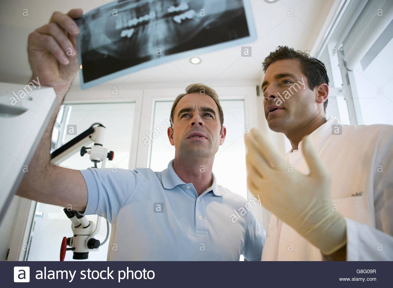 Dentist and dental assistant looking at dental x-ray - Stock Image