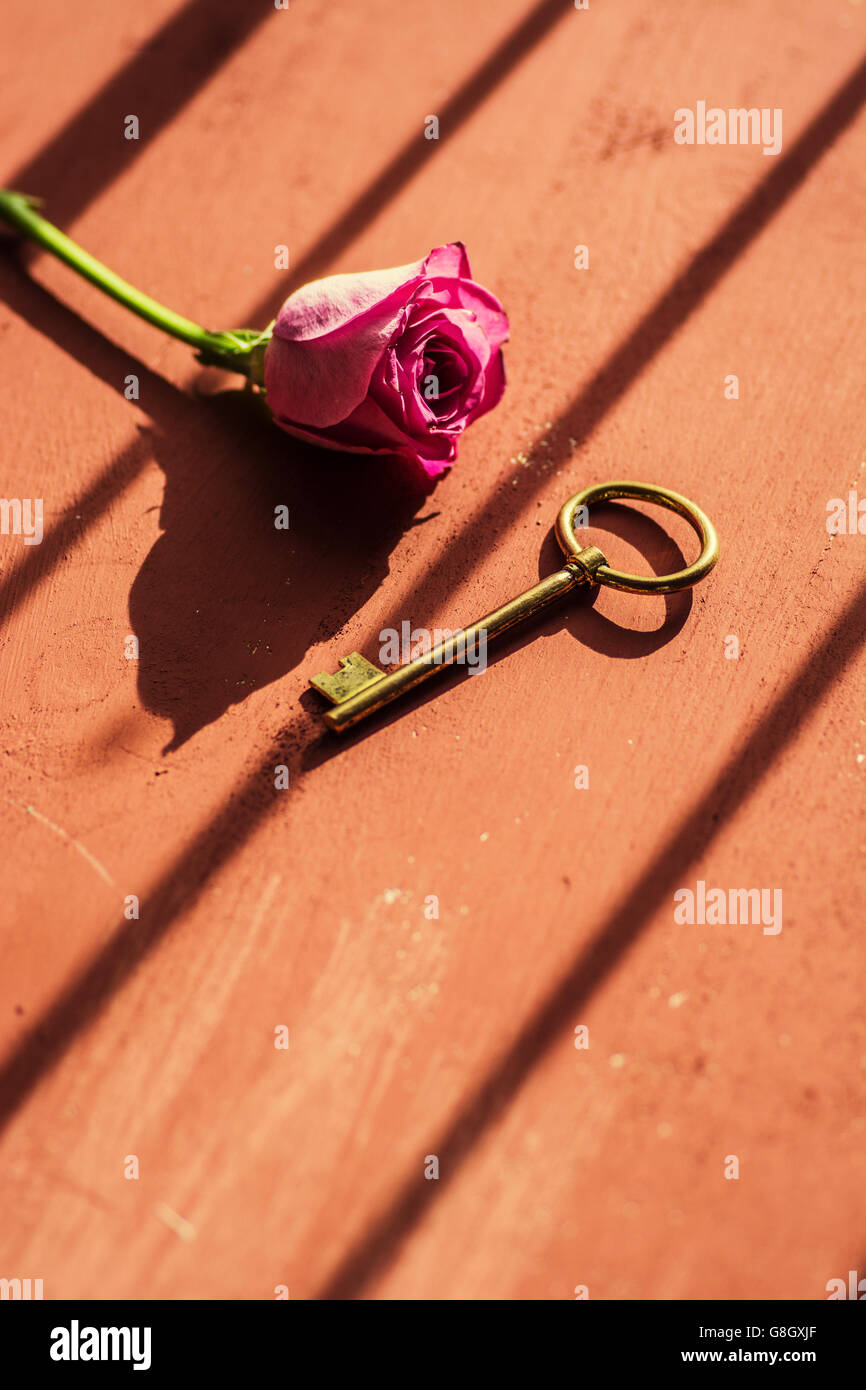 Pink rose with old metal key - Stock Image