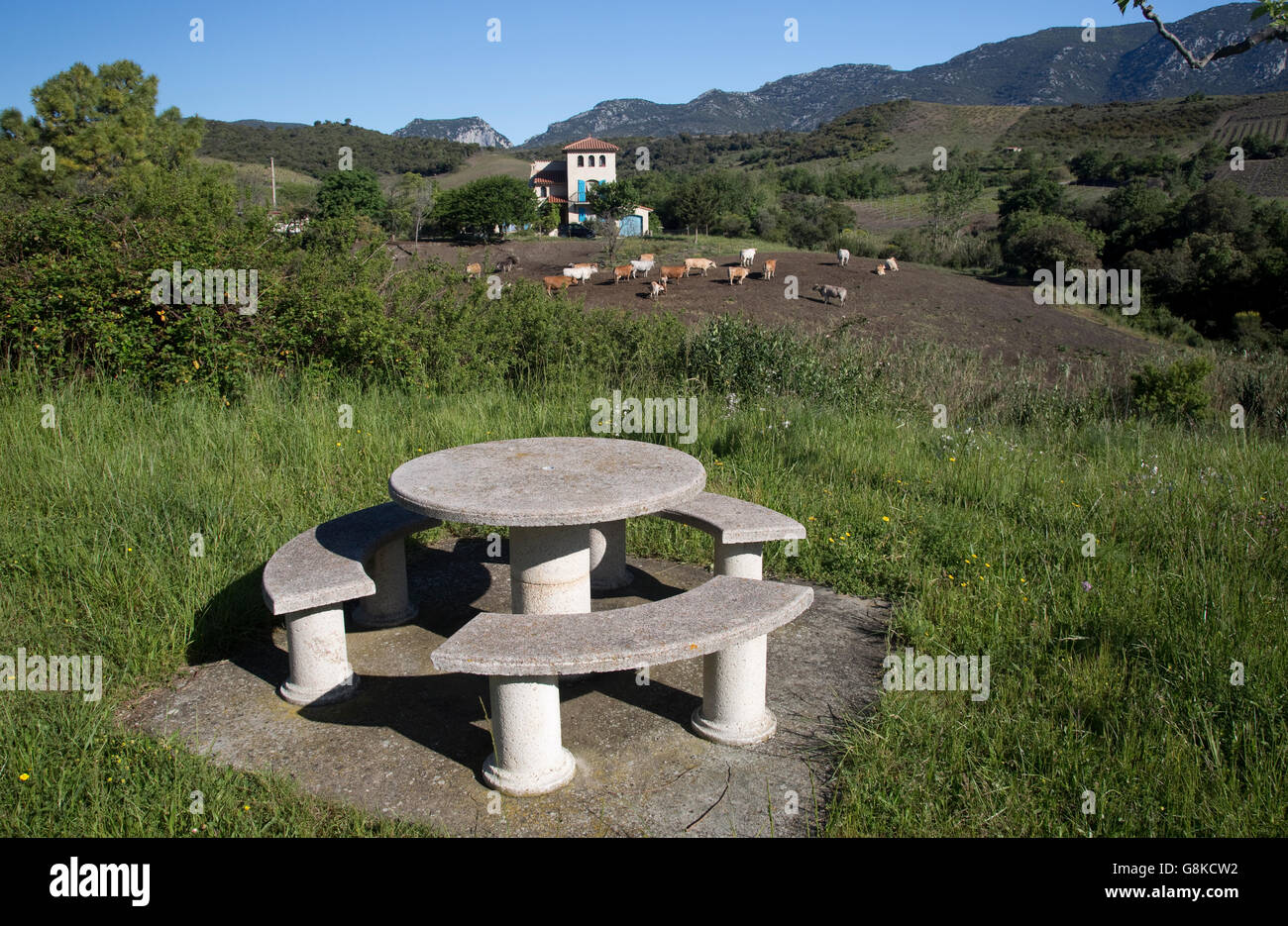 Round Stone Picnic Table And Seats In Rest Area No People Near Small - Stone picnic table