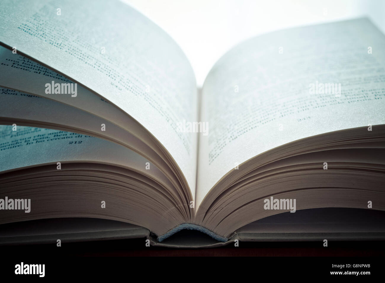 close up of an open book - Stock Image