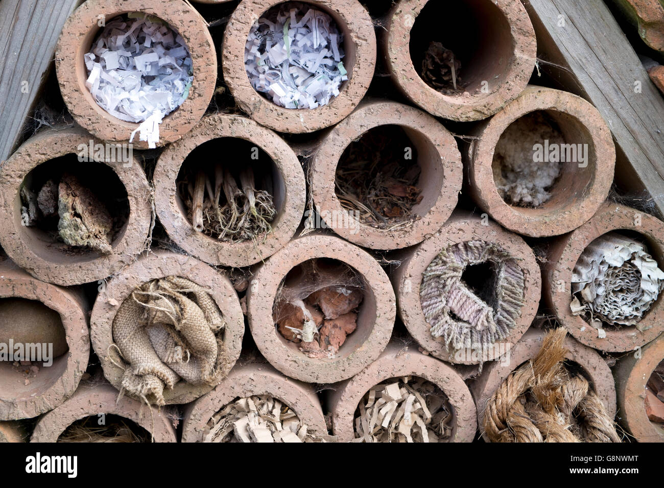 Insect hotel offering nest places in clay pipes - Stock Image