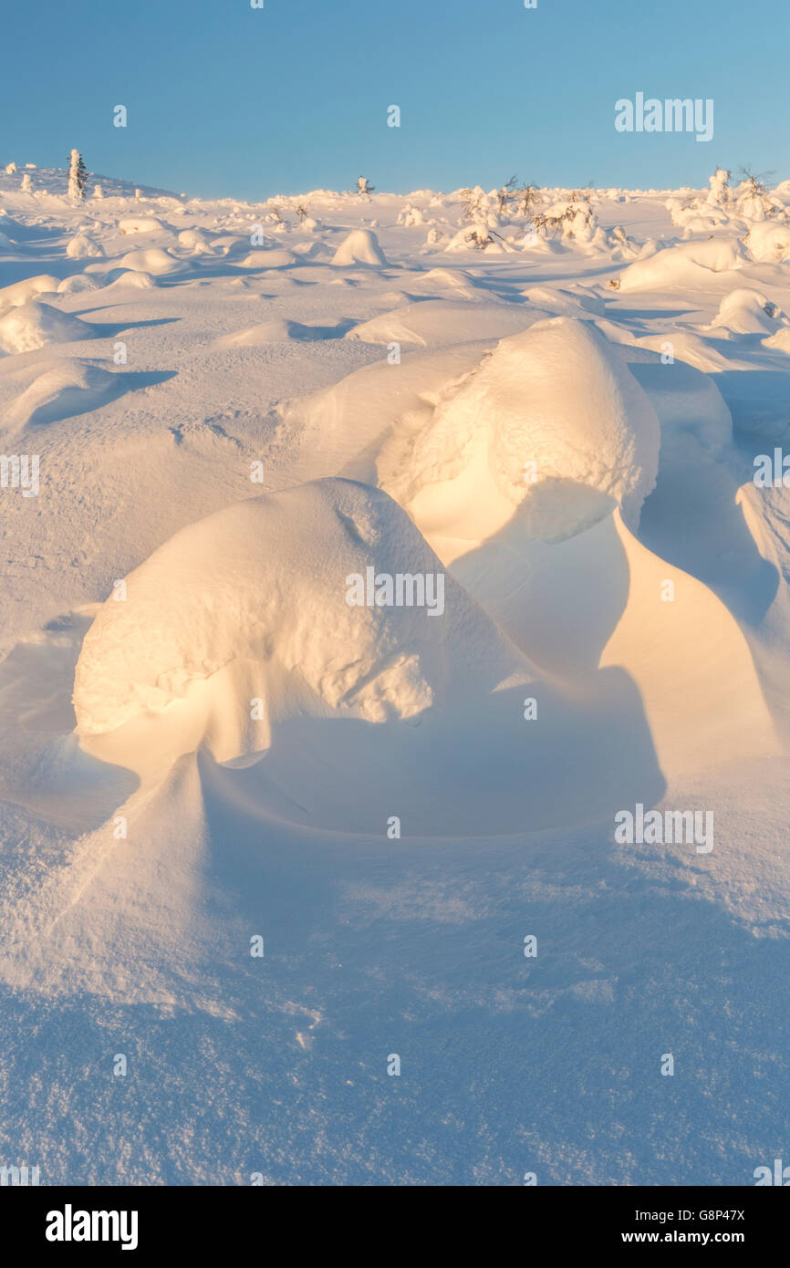 Winter landscape and snow making small hills and blue sky, Gällivare, Swedish Lapland, Sweden - Stock Image