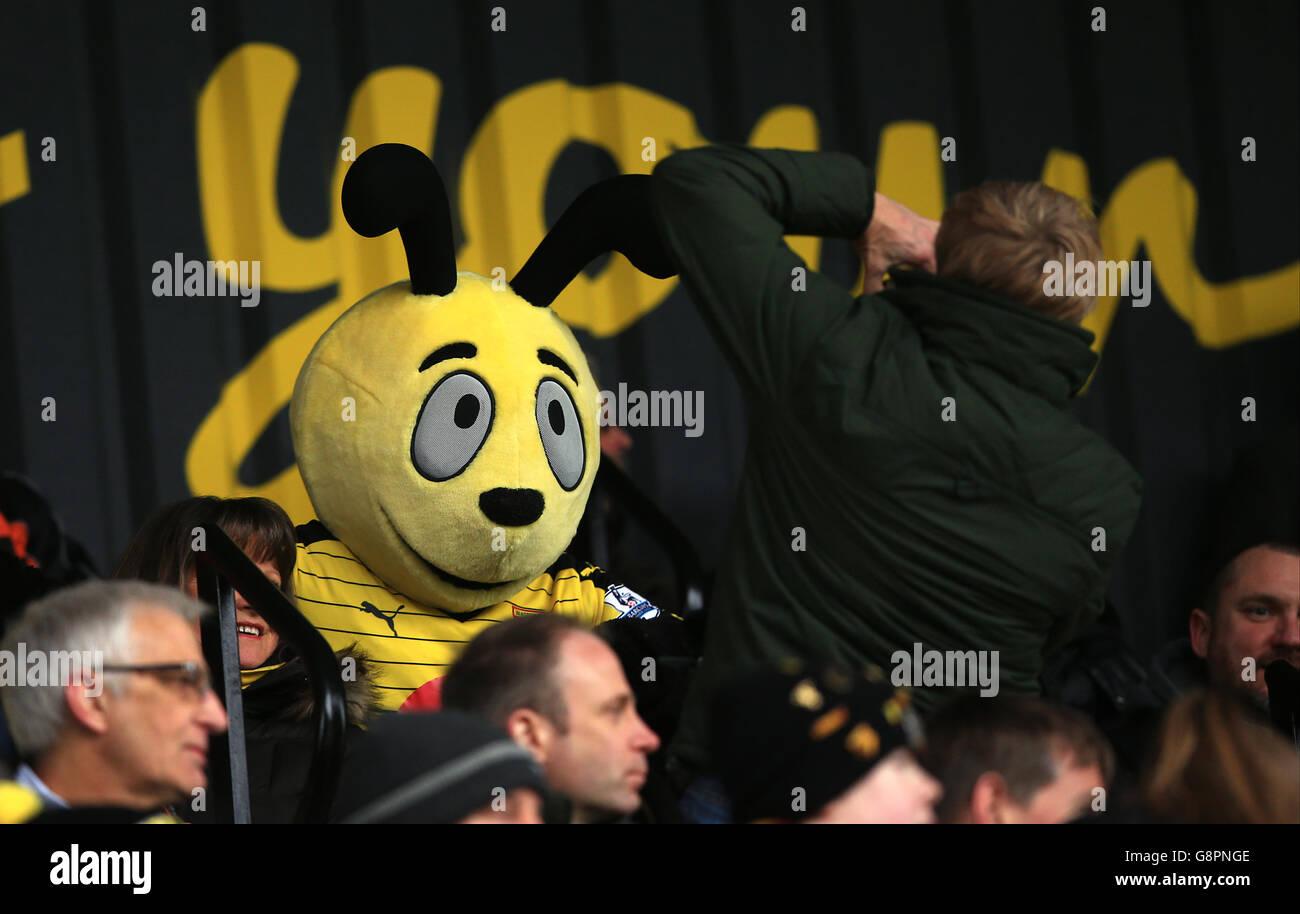 Watford Mascot Harry Hornet Stock Photos & Watford Mascot