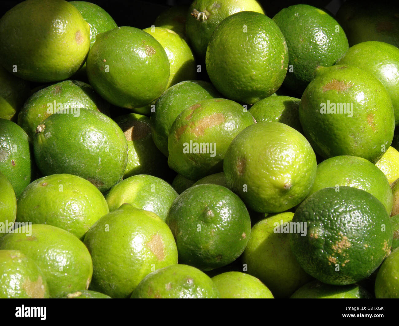 Ripe limes at a farm stand. - Stock Image