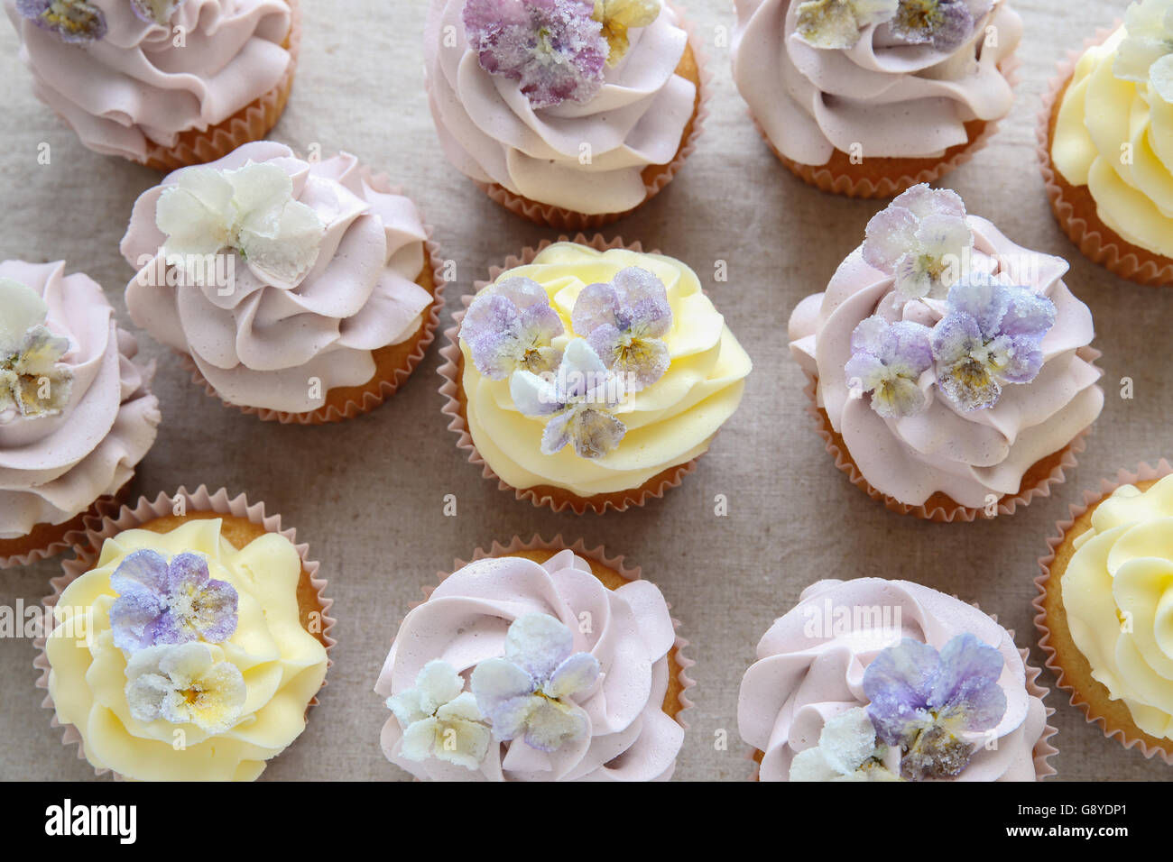 Purple and yellow cupcakes with sugared edible flowers - Stock Image