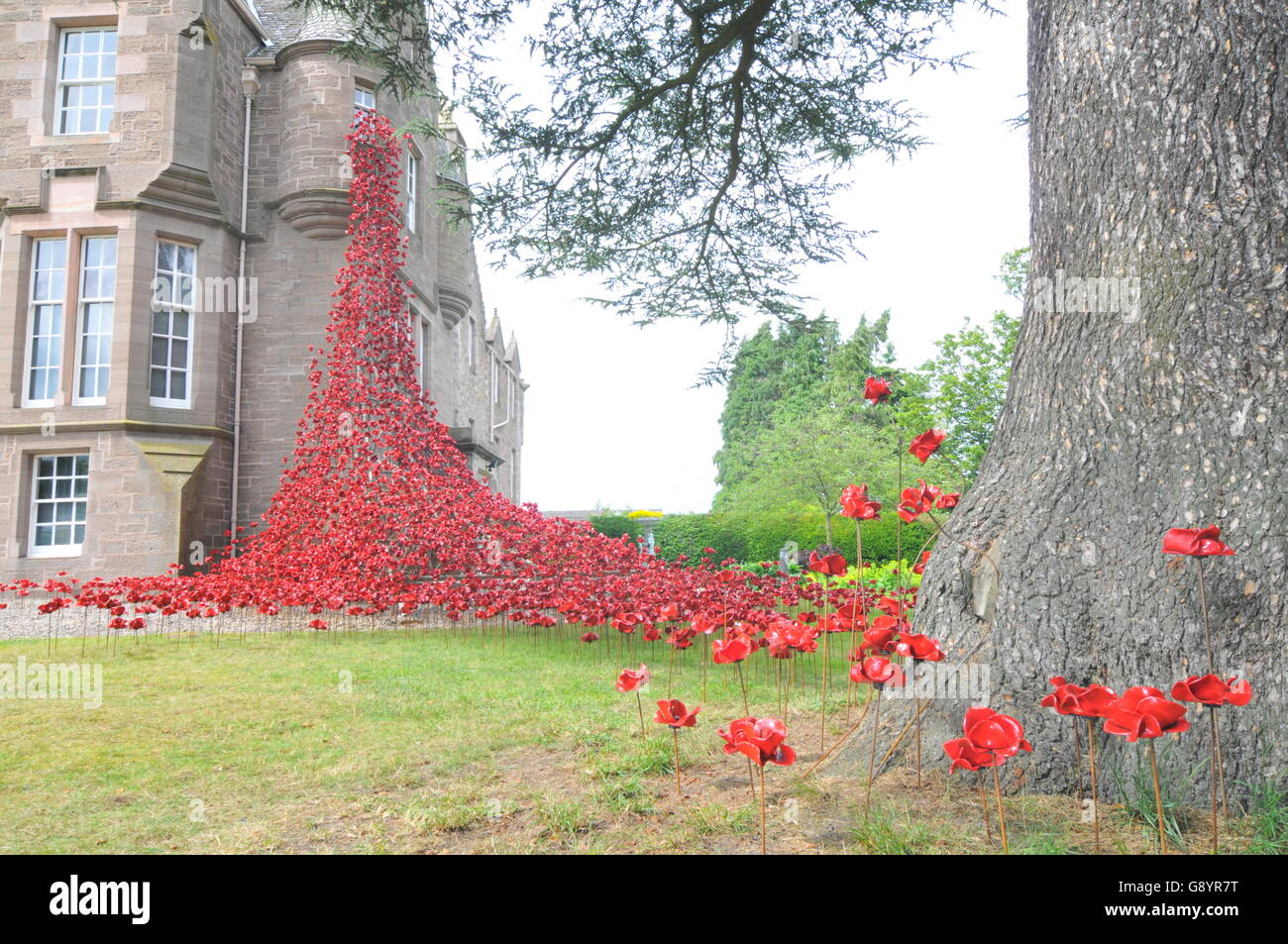 Perth, Scotland, UK. 30th June, 2016. Weeping Window by Paul Cummins (artist) and Tom Piper (designer) opened for - Stock Image