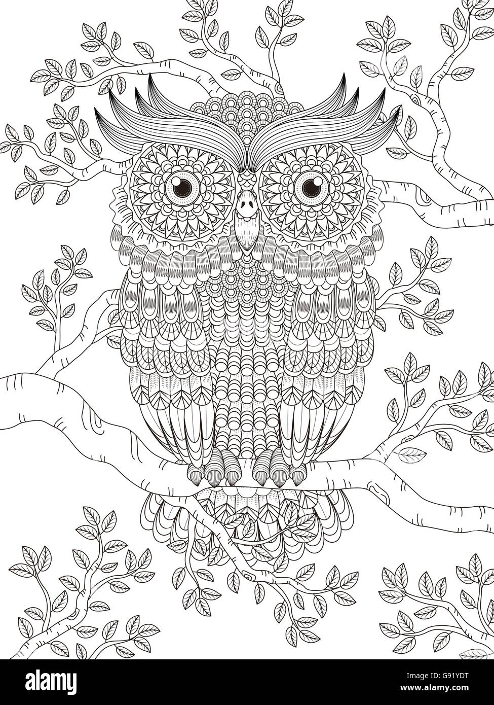 Adult Coloring Page With Gorgeous Owl In The Tree Stock Vector Art