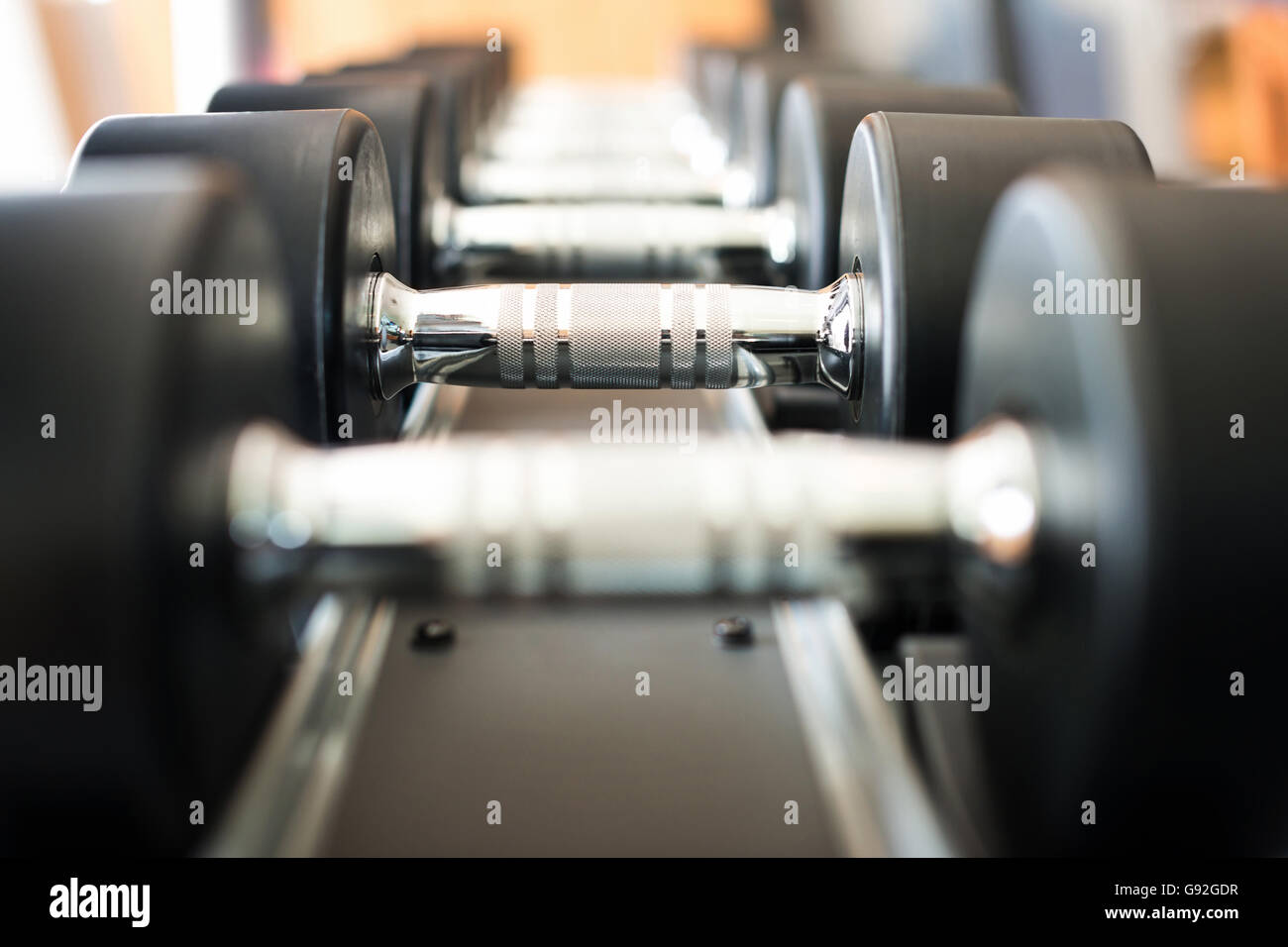 Dumbbell in fitness club - Stock Image