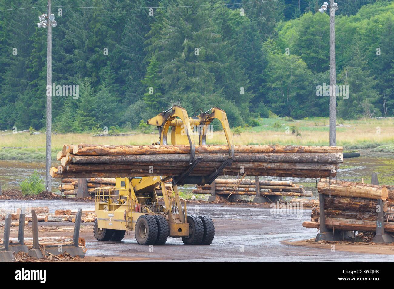 Lumber Mill Log Storage With Logging Equipment, Telegraph Cove, Vancouver  Island, British Columbia, Canada