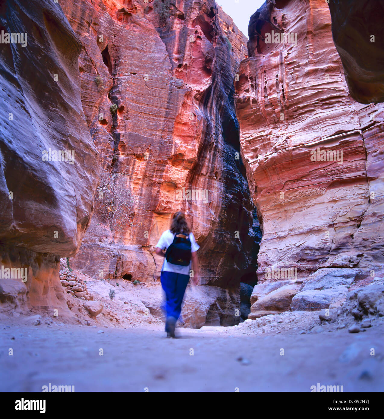 The Siq, the narrow slot-canyon that serves as the entrance passage to the hidden city of Petra, Jordan, seen here Stock Photo