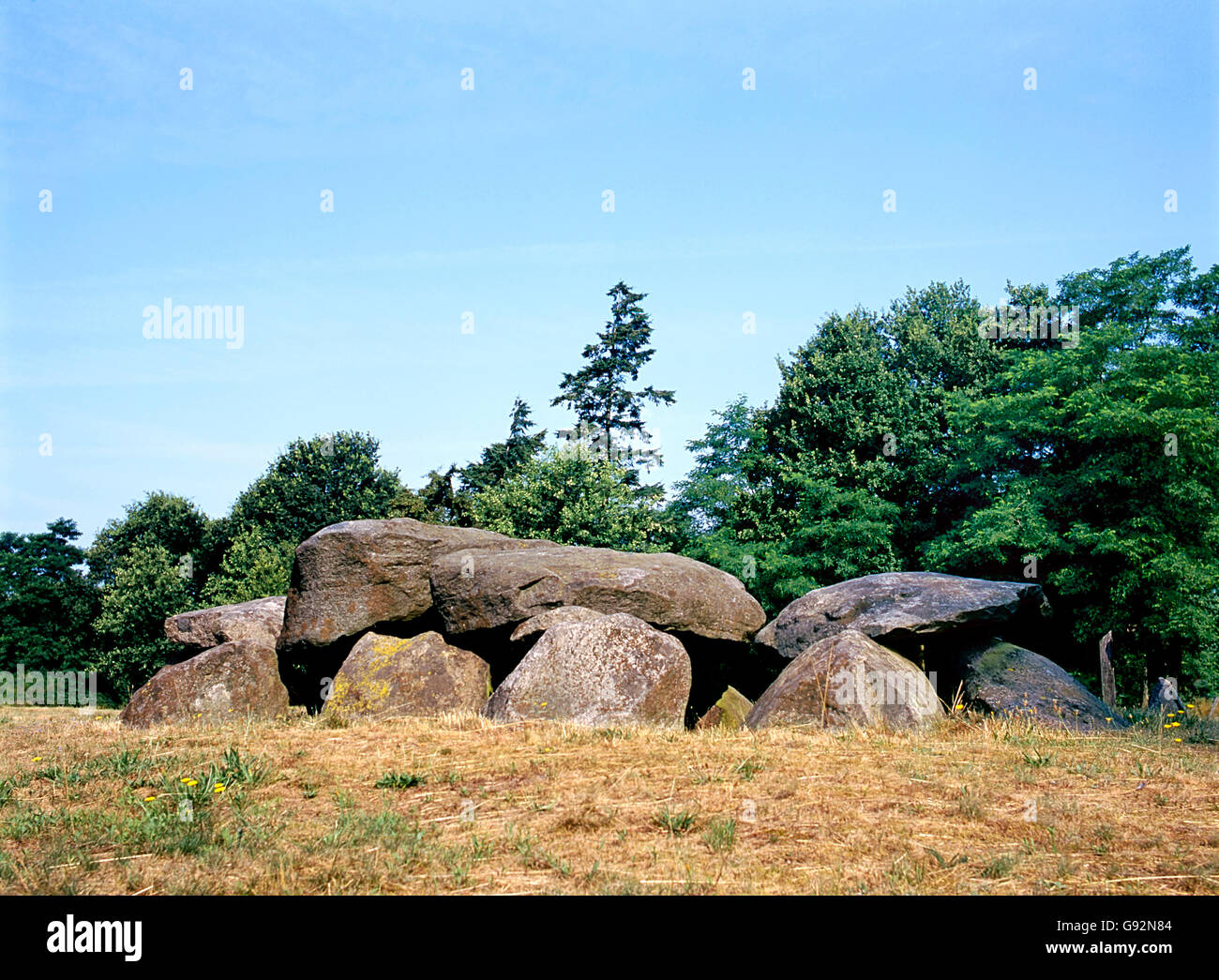 Old stone grave like a big dolmen in Drenthe Holland. It is called in Dutch a Hunebed - Stock Image