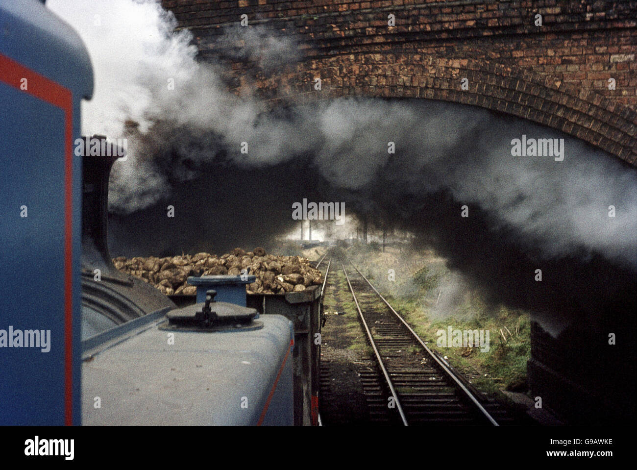 Peterborough sugar factory's Hudswell Clarke 0-6-0T hauls a rake of sugar beet into the factory. - Stock Image