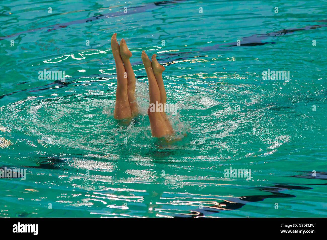 two athletes synchronized swimming during a competion running an upside remaining in apnoea with the legs and feet - Stock Image