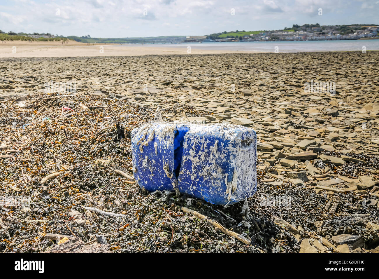 A blue plastic container covered in weeds washed up on a beach in the UK - Stock Image