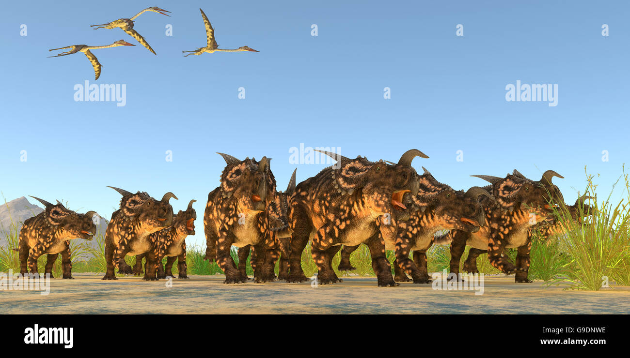 Quetzalcoatlus flying reptiles fly over a herd of Einiosaurus dinosaurs during the Cretaceous Period. Stock Photo